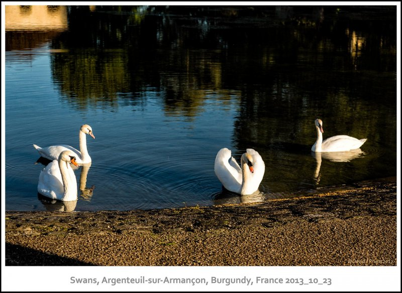 669_Argenteuil-sur-Armanc_on2013_10-Edit.jpg