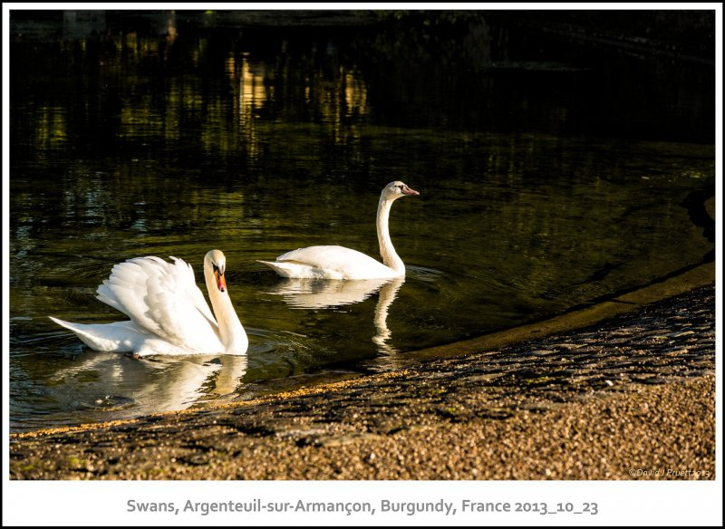 670_Argenteuil-sur-Armanc_on2013_10-Edit.jpg