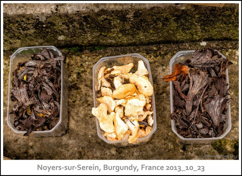 700_Noyers-sur-Serein2013_10-Edit.jpg