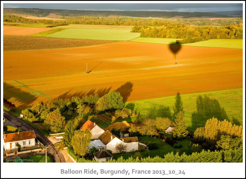 950_Balloon_Burgundy2013_10-Edit.jpg
