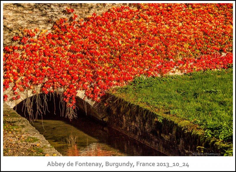 1035_Abbey_de_Fontenay2013_10-Edit.jpg