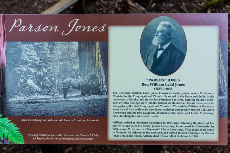 17 Armstrong Redwoods State Natural Reserve 2014_04.jpg