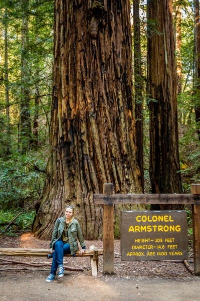 33 Armstrong Redwoods State Natural Reserve 2014_04.jpg