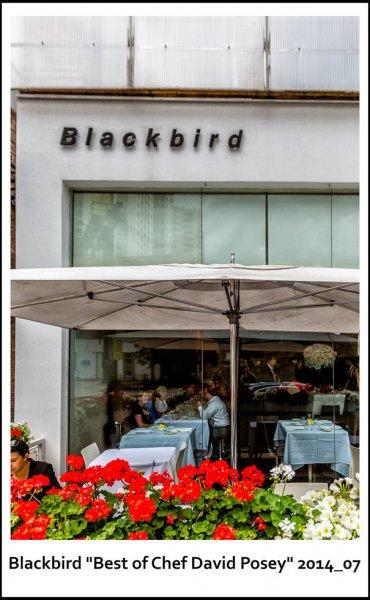 001-BlackbirdChicago2014_07.jpg