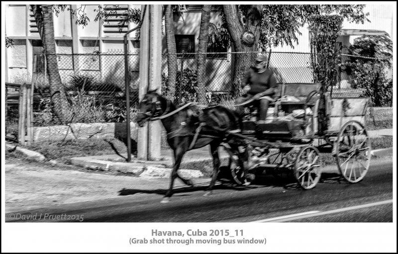 051_Cuba_Halleck_Trip2015_11-Edit.jpg