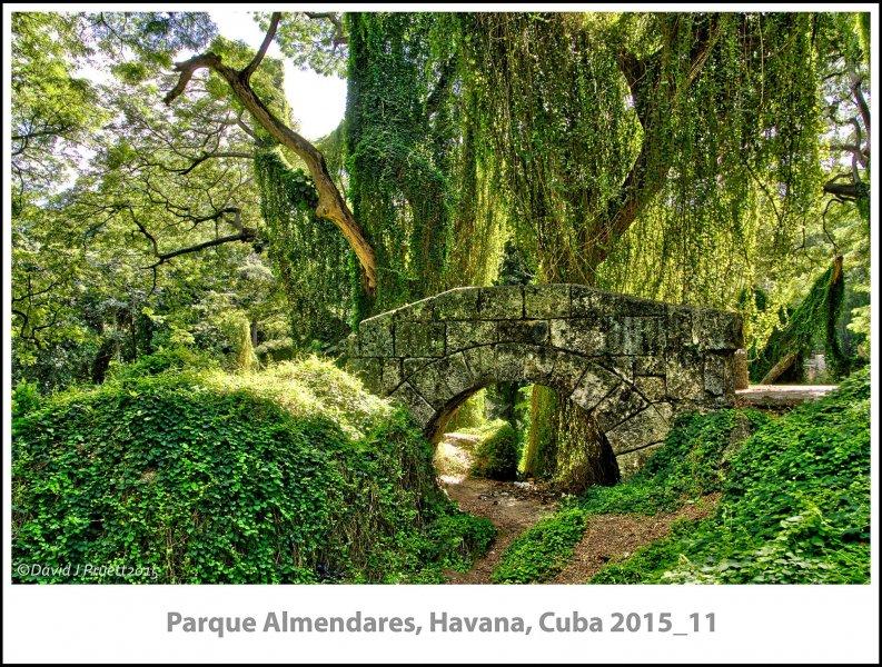 196_Cuba_Halleck_Trip2015_11-Edit.jpg