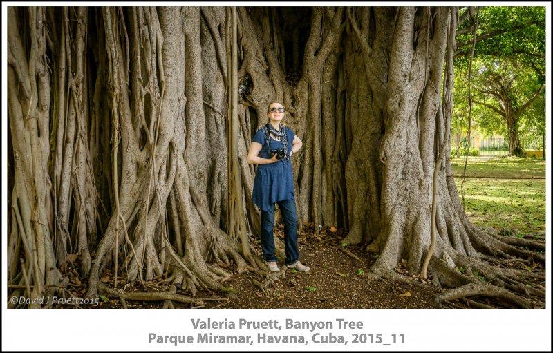 272_Cuba_Halleck_Trip2015_11-Edit.jpg