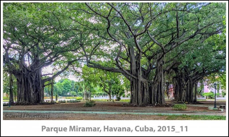 296_Cuba_Halleck_Trip2015_11-Edit.jpg