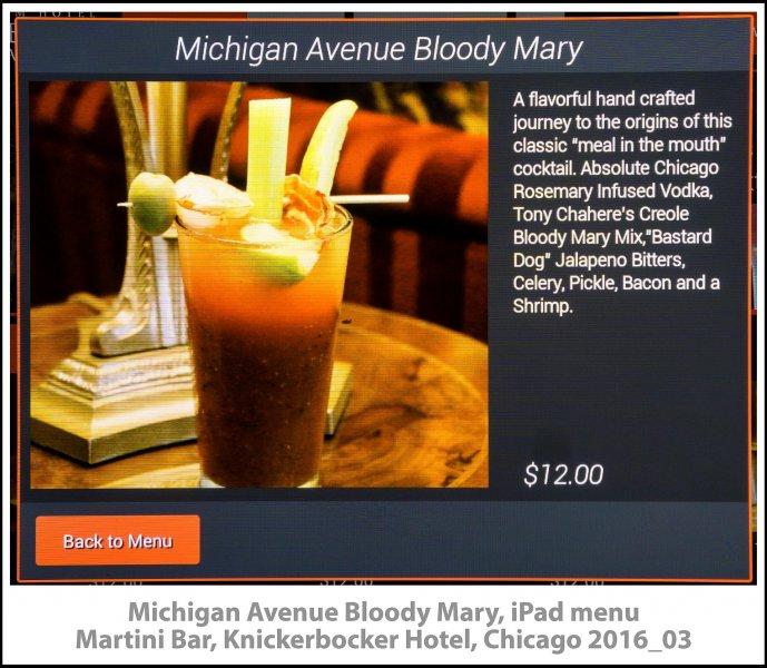 007_Knickerbocker_Martini_Bar_Chicago2016_03-Edit.jpg