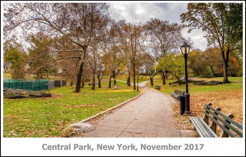 421_New_York2017_11-Edit.jpg