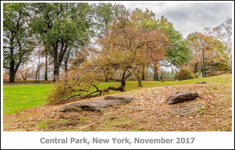 430_New_York2017_11-Edit.jpg