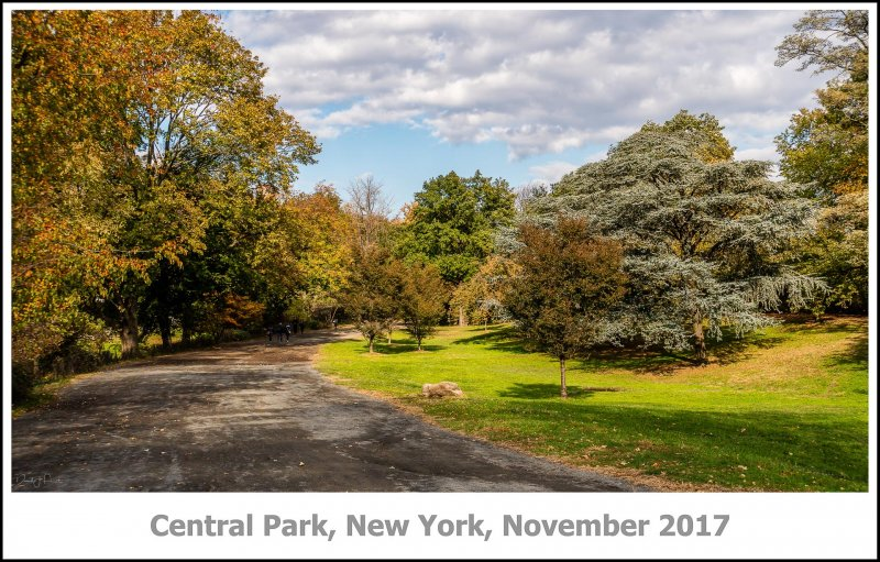 451_New_York2017_11-Edit.jpg