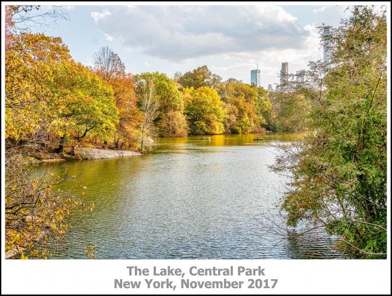 513_New_York2017_11-Edit.jpg