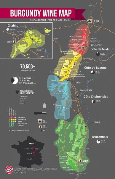 Burgundy-Wine-Map-wine-folly.jpg