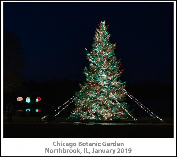 008_Chicago_Botanic_Garden2019_01-Edit.jpg