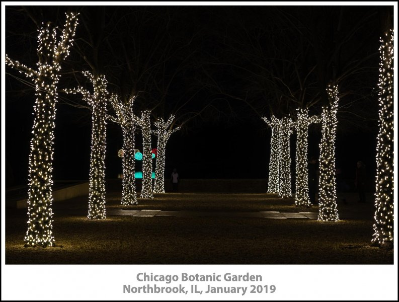 016_Chicago_Botanic_Garden2019_01-Edit.jpg