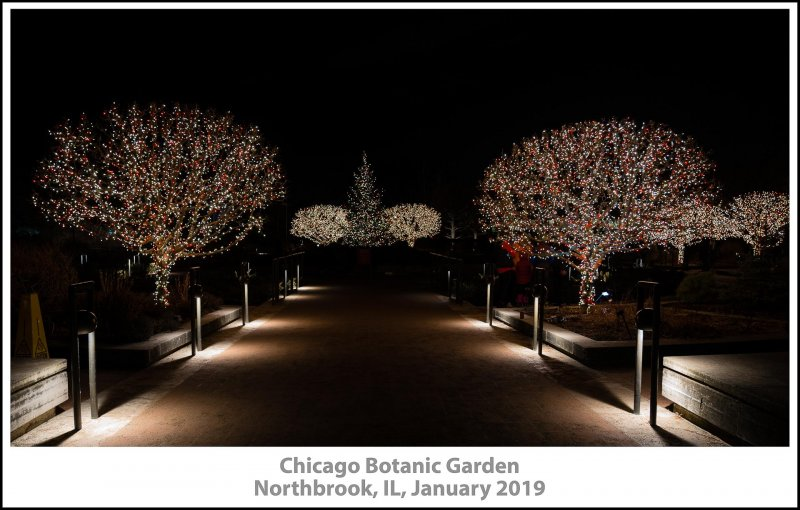 032_Chicago_Botanic_Garden2019_01-Edit.jpg