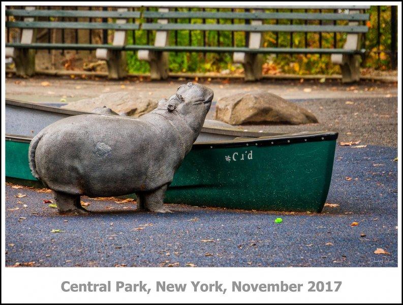 436_New_York2017_11-Edit.jpg